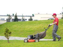 mantenimiento-jardines-cancun