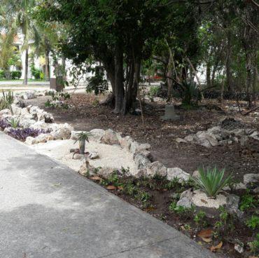 mantenimiento-de-jardin