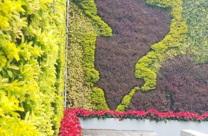 jardin-vertical-exterior-3